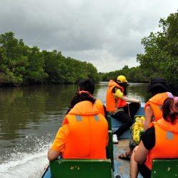 Wisata Mangrove Lagoi Bintan