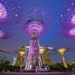 Jelajahi Keindahan Wisata Malam di Singapore